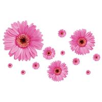 5Set/lot 100*80cm 3D Flower Stickers For Bedroom Decor & Transparent Edge Pink Flower Vinyl 3D Wall Stickers