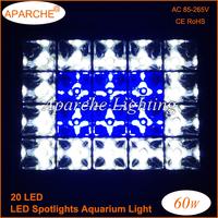 Hot sales 2015 New 60W 20X3W LED Coral Reef Plant Grow Flood Light Fish Tank Aquarium White Blue LED Bulbs