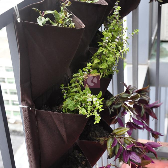 6 bolsos semeadores verticais em Wall início jardim vasos de flores plantadores BWP-204 grátis frete(China (Mainland))