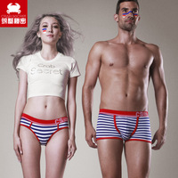 2 craal lovers panties sexy stripe 100% cotton print male women's trunk
