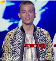 2013 male rock jacket leopard print zipper sweatshirt outerwear sportswear