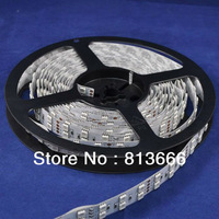 free shipping 16.4FT Double Row 5050 RGB LED Strip 5M 600 Leds SMD Light Non-Waterproof 12V