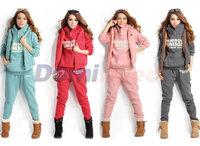 2014 New fashion 3 in 1 SET women sport sweater autumn and spring season good quality women's sweatshirt hooded 3pcs/set