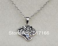 free shipping Jacksonville Jaguars sport necklace
