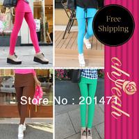 False Two-piece Legging Pantskirt  Free Shipping  Warm Hot Shapers Pants Sweat Pants Women 4 Colors T2292