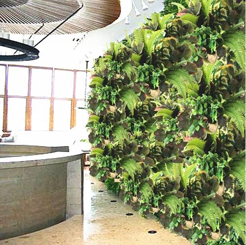 Acquista allingrosso Online piante a foglia verde da ...