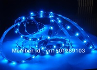 Waterproof Flexible LED Strip (60led per meter) 5050SMD IP65 (Glue) Blue -5 meters