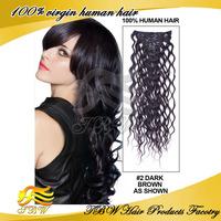 Unprocessed Braizlian Virgin Clip in Hair Extension Brazilian Human Hair Extensions Machine Weft 100g/pc for Sale High Quality