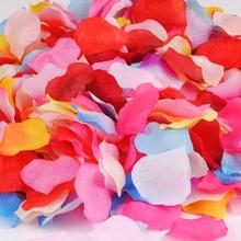 petal party promotion