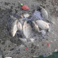 HOTT SELL fishing net New Design Copper Spring Shoal Fishing Net Netting Luminous beads Swivel fishing tackle box fishing lure