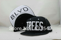 Black Supply Company BLVD Coconut Trees snapbacks Baseball Cap Hat