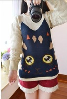 Pinterest 1014 autumn small fresh sweet big eyes cat vintage all-match loose pullover sweater