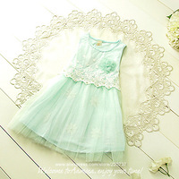 Wholesale 5pcs/lot (#1026), lace flower baby girl dress,  2014 summer kids clothing,new fashion girls clothes