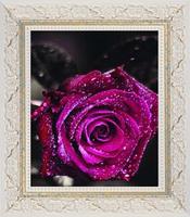 Free Shipping Purple roses diamond painting 30*40CM 3D square resin diamond cross stitch , home decorations painting