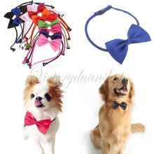 cheap dog collar