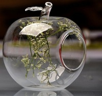 Free Shipping! Home Decoration Apple Shaped Transparent Glass Vase,Flower Plant Vase Flower Pots Planters