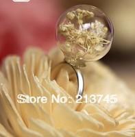 Free Ship! *set* 20sets/lot 20mm (6mm opening) Glass globe & 10mm ring base set glass bottle vials pendant DIY