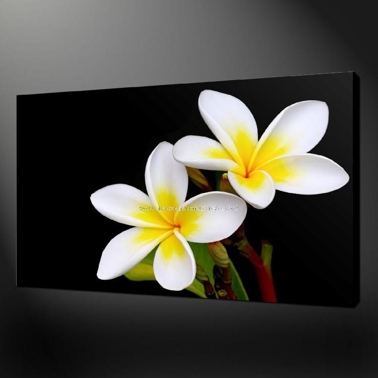Tropische Bloemen Kopen Premium Kwaliteit Tropische Bloemen Canvas Olieverfschilderijen Moderne