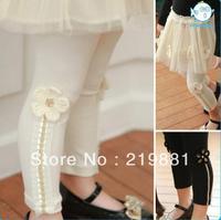 Girl new cotton flower leggings  , baby pants girl, 5pcs/lot   LCY09