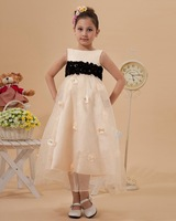 Empire Two Tones Tea Length Applique Flower Girl Dress