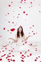 Free Shipping 1000pcs/Lot Artificial Flower Silk Rose Petals Wedding Flowers Decor Party Decorations B.H