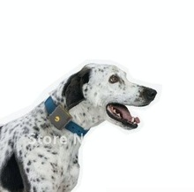 cheap dog gps tracker