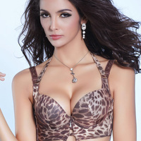 Leopard grain Bra magnetic therapy Bra Chinese embroidery bronzing W5145