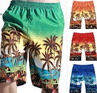 Free shipping 2014 Sexy Summer Hot Sale BoardShort Men's Beach Shorts/Surfer's Shorts/Beach Pants Size XL XXL 3XL 4XL 5XL