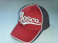 Free shipping men-women Sochi 2014 cap bosco sport  sunbonnet hat adjustable baseball hats bboy