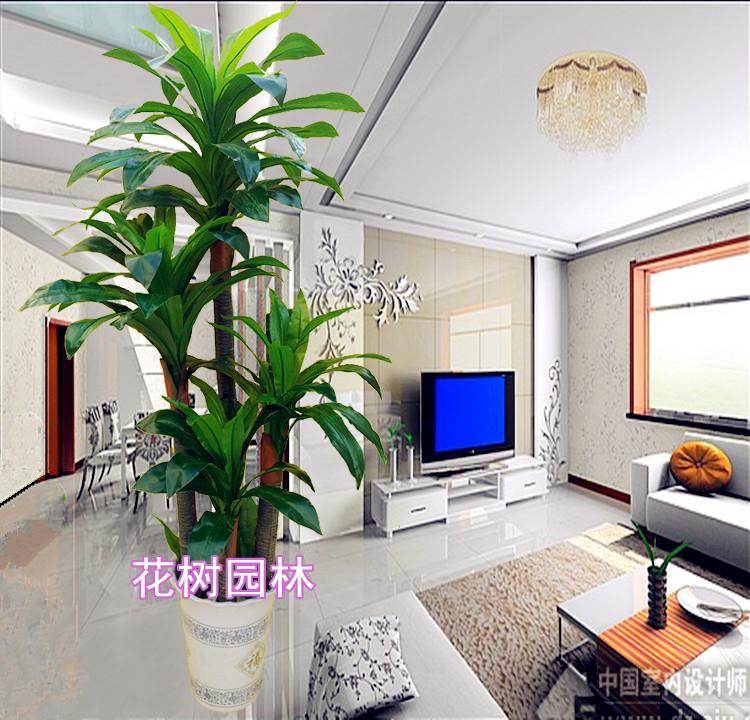 Groothandel kunststof bonsai bomen kopen kunststof bonsai bomen partijen uit china kunststof - Decoratie kantoor ...