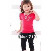 Hot sale new 2014 baby girls clothing sets 2pcs ( girl T shirt + leggings) summer - autumn clothing girl GDT-349