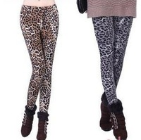 Girl country. The new 2014 female trousers. Sexy fashion pencil pants. Cultivate one's morality leopard-print leggings