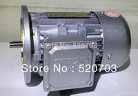 Worm gear motor YL90S-2-2.2kW single phase motor