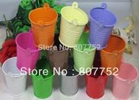 wedding candy box bucket tin box Free shipping tin box Mini Pail Mint Tin Wedding Favors ,12 colour mix batch