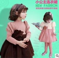 Winter thickening is not velvet children's dress Korean brand children's clothes autumn winter  Children dress