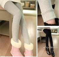443d 2013 winter legging all-match fashion plus velvet thickening slim thermal legging