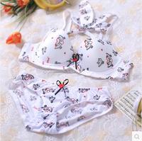 Underwear women's push up brief sexy young girl underwear bra set tz306