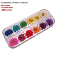 Free Shipping Latest Popular 100% Nature Pressed Flowers A-Grade Dried Flowers For Nail Art And DIY Decoration 1.5cm 60pcs/box