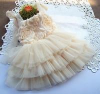 Girls bridesmaid princess dress rose Flower girl wedding dress Evening dress children long paragraph kids costumes