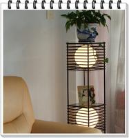 Fashion fashion coffee table floor lamp flower entranceway shelf floor lamp remote control
