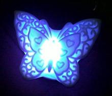 rechargeable fluorescent light promotion