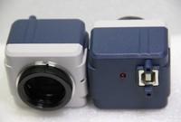 CCD CAMERA! FREE SHIPPING   MICROSCOPE DIGITAL VIDEO  USB2.0 CAMRA