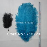 """14-16""""(35-40cm) Blue Color  Wedding Centerpieces Decoration Ostrich Feather Plume 20pcs/lot Ostrich Feather"""