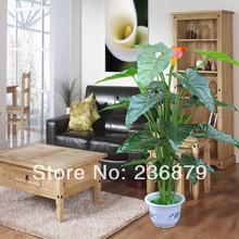 wholesale indoor decor