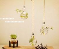 lamp bulb hanging plant terrarium small glass vase bulb vase