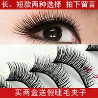 False eyelashes low-high lengthen natural dense long design winged thick Eyelash extensions Free shipping