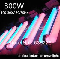 600W(2*300W)100-300V Induction Grow Light 300W Lamp