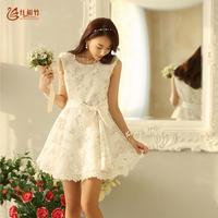 2014 spring   and summer print  basic tank dress  female one-piece sleeveless  dress