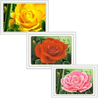 5d water round diamond masonry diamond painting drip rose powder 3 large new arrival