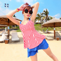 Free Shipping 2014 split skirt style swimwear beautiful the endomorph swimming equipment  Womens/Ladies/Girl Swimwear Beach